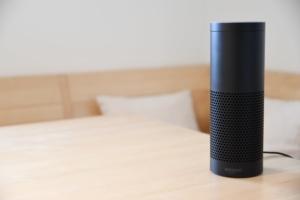 Amazon Alexa voice search device